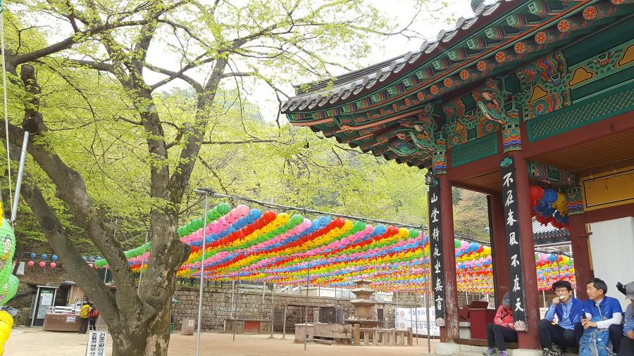 Nguyen, Anna; South Korea - Episode 14 (9)