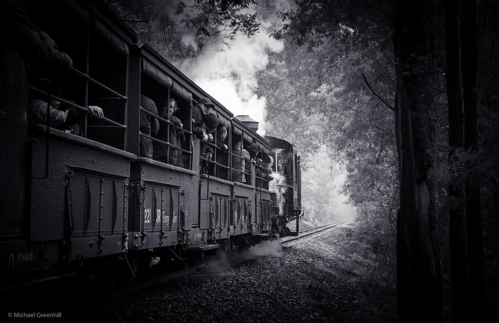 Escape the forest by michaelgreenhill