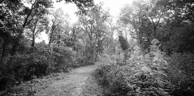 Illinois landscape.