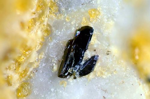 Ferriakasakaite-(La), Ferriandorosite-(La) | by dnh_macro