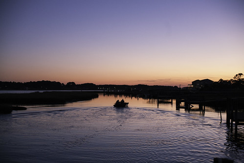 chincoteague-1 | by lifeinthedistrict