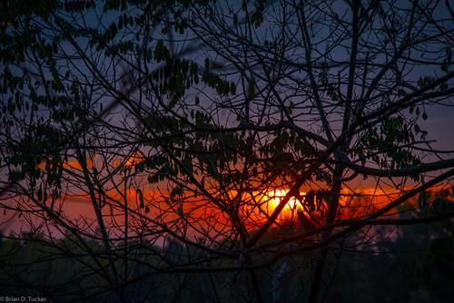 morning autumn fall leaves silhouette sunrise dawn morninglight october greenwood hike 2015 d610 blacklocust greenwoodconservationarea briandtucker october2015