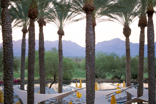 arizona mountains pool phoenix sunrise hotel resort palmtrees valley 2015 jwmarriottdesertridge jwdesertridge workcation
