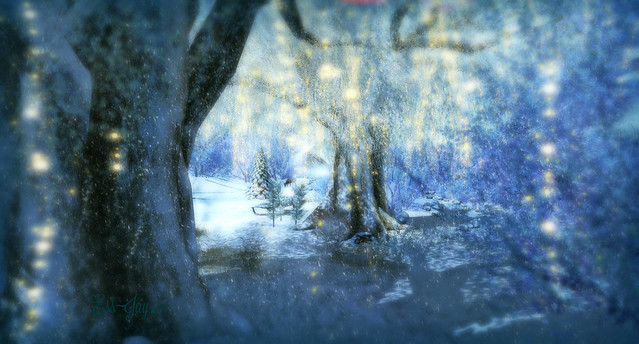 The Winter Forest - Blue Winter
