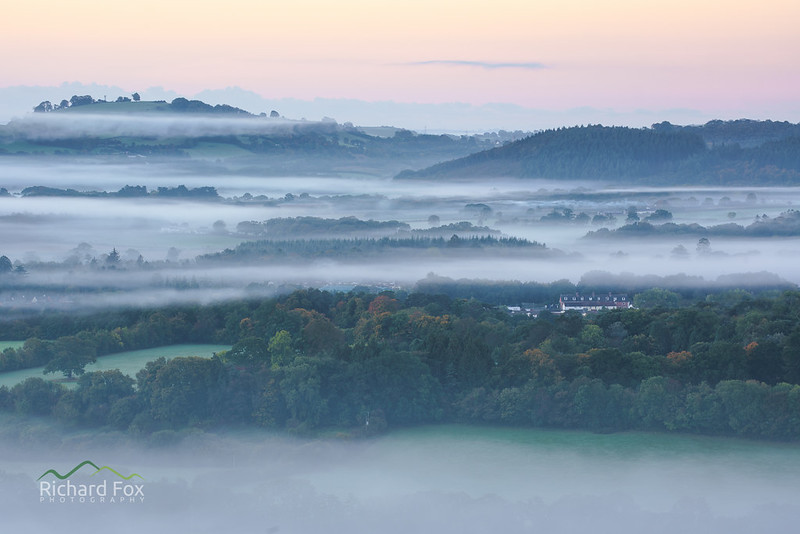 Ilsington Mists