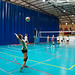 2016 11 12 JUDEX J3 Voleibol Arroyo vs Ribera