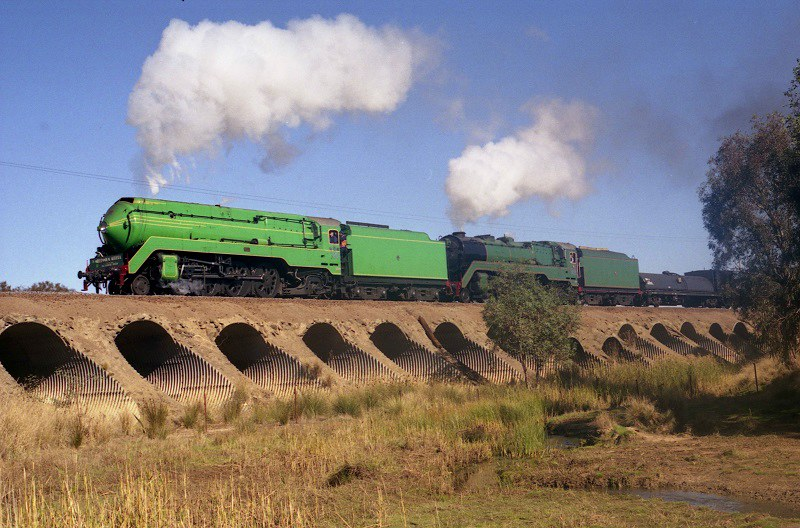 Double 38's in Western Victoria by David Arnold