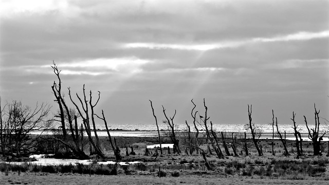 The line it is drawn The curse it is cast