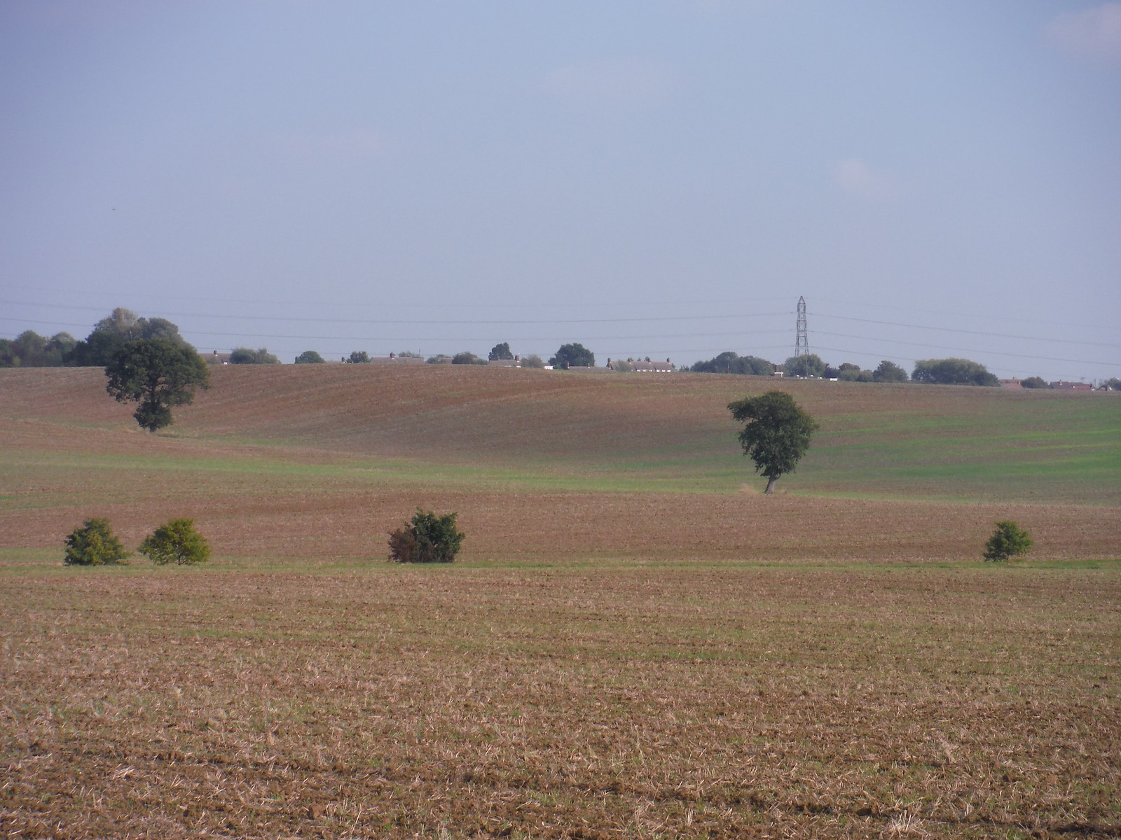 Fieldscape (I) SWC Walk 159 South Woodham Ferrers to North Fambridge
