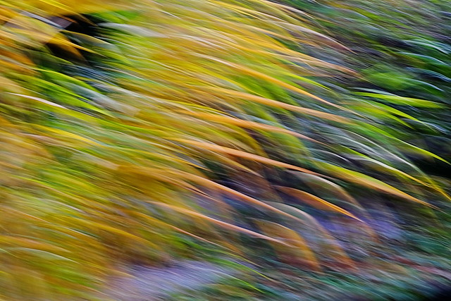 Abstract: The essence of wind