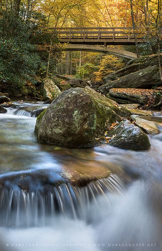 bridge autumn mountains fall yellow creek landscape outside outdoors photography waterfall nc october colorful stream hiking vibrant seasonal northcarolina carolina cascade woodenbridge blueridgemountains pedestrianbridge hikingtrail appalachianmountains headwaters tanawhatrail elevatedbridge southernappalachianmountains booneforkcreek markvandyke