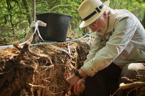Roe Down Farm Dig