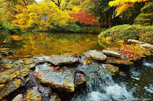fortworth botanicgarden gardens ponds lakes dams rockdams fallcolors