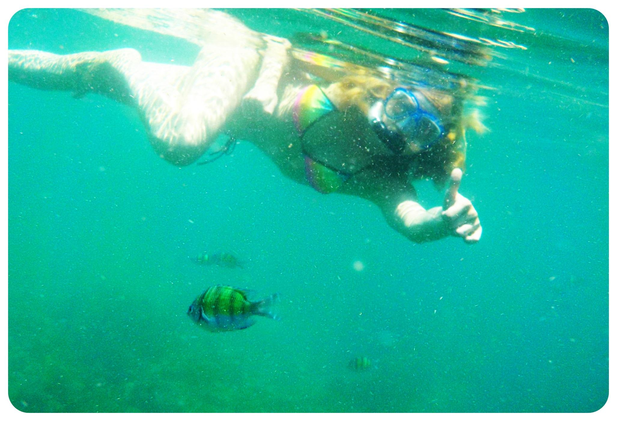 dani snorkeling