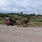 Po, 03/26/2012 - 08:33 - Afrika 2012