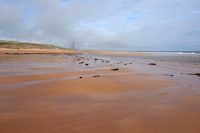 The coast north of Peterhead
