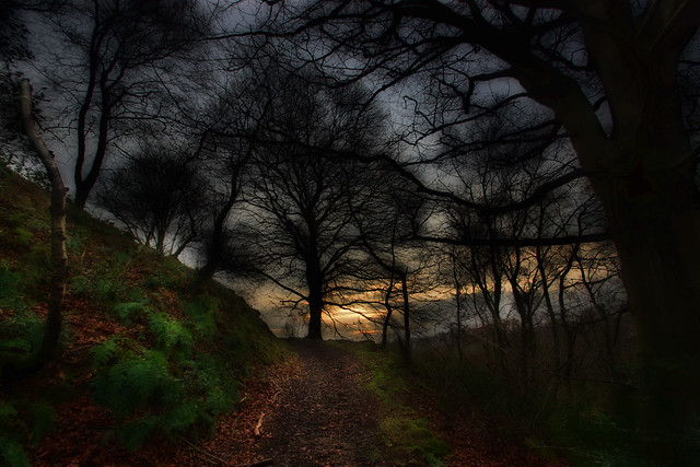 December Sunset: RSPB Coombes Valley