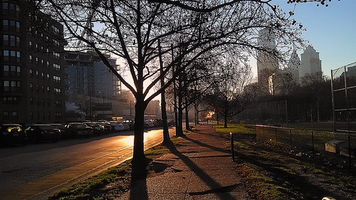 city morning trees shadow urban usa philadelphia skyline america sunrise unitedstates pennsylvania sidewalk pa pennsylvaniaavenue metropolis philly fairmount metropolitan 215 wintermorning cityofbrotherlylove project366