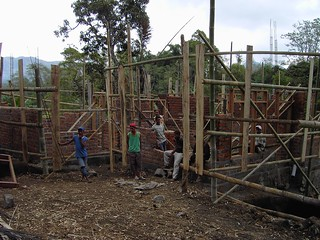 Flores. Housing building in Bajawa. Local lads and bamboo scaffolds.