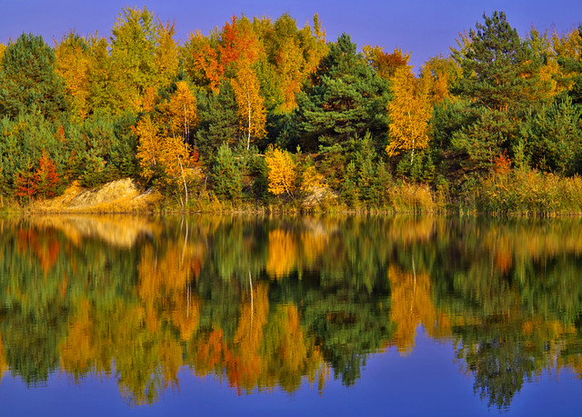 Autumn reflections (19)