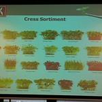 2012 Kresse-Aroma-Seminar