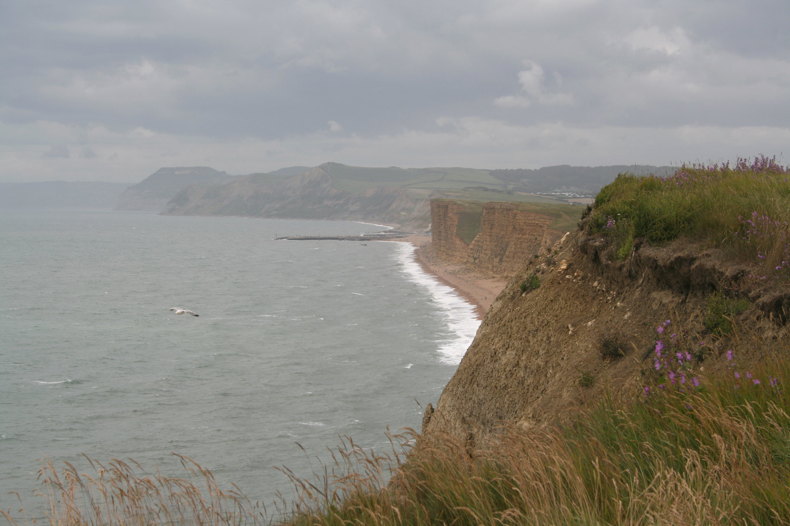 View to West Bay from Burton Bradstock