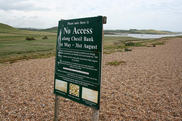 Chesil beach near Abbotsbury