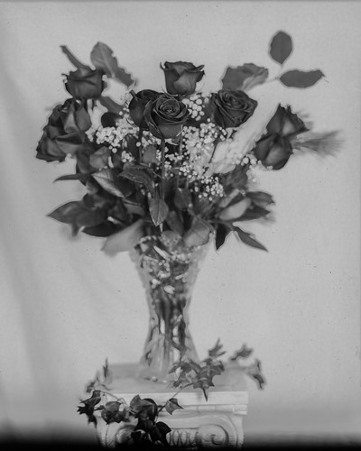 Paper Negative #17 - paper preflashed | by chrism229
