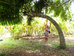 Travel Rarotonga October 2016