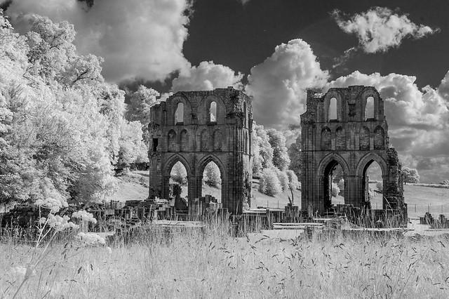 Roche Abbey infrared