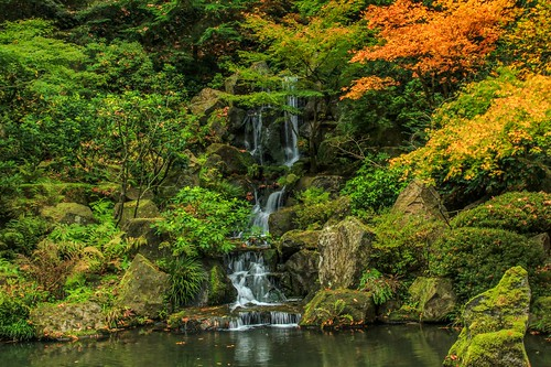 autumn fall canon portland japanesegarden pacific northwest t3i