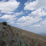 Meadow on Sepulcher Mountain