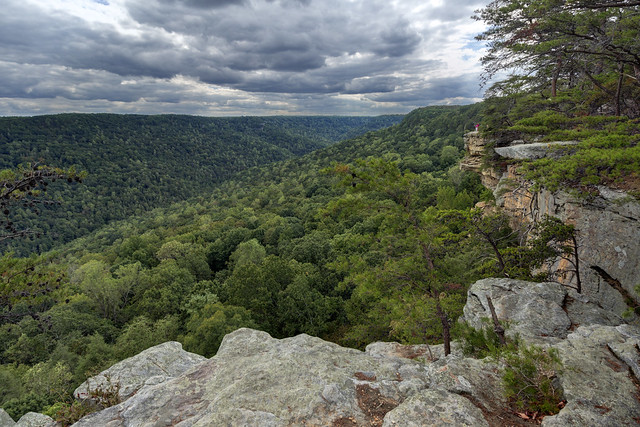 Stone Door overlook, Savage Gulf, Grundy County, Tennessee 2