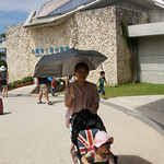 水族館 SONY DSC