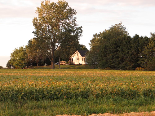 Farm, Chatham-Kent Highway 3, Chatham-Kent, Ontario | by Ken Lund