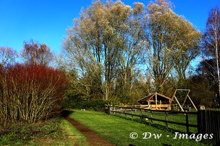 Barnwell country park_wm