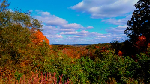 100v10f creation nature crahenvalleypark parks october fall autumn usa 2016 michigan colors sky clouds