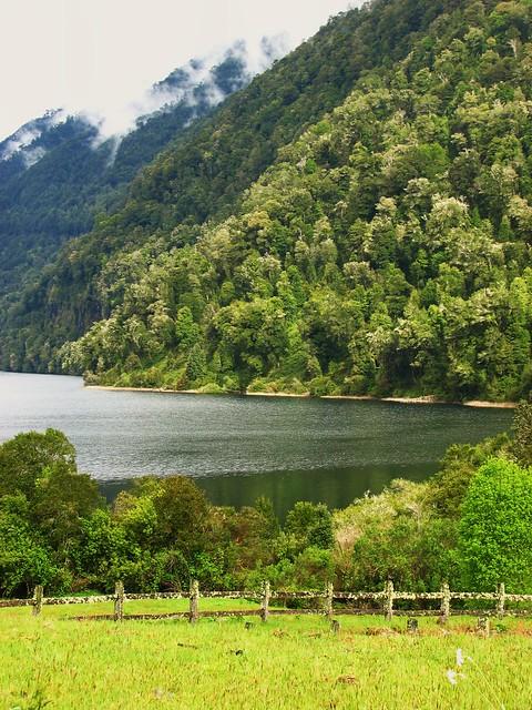 Bosques,Naturaleza,Lago Huichun,Cordillera andes,Chile