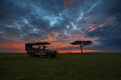 africa sky tree grass silhouette clouds sunrise landscape kenya 4wd safari vehicle afrika savannah plains acacia gamedrive riftvalley eastafrica maasaimara acaciatree republicofkenya narokcounty maranorthconservancy landcruisertoyotatoyotalandcruiser mariostree