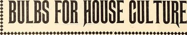"Image from page 5 of ""Elliott's flowering bulbs that bloom in the spring"" (1895)"
