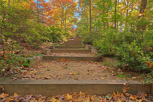 Autumn Arboretum Stairway - HDR | by Bold Frontiers