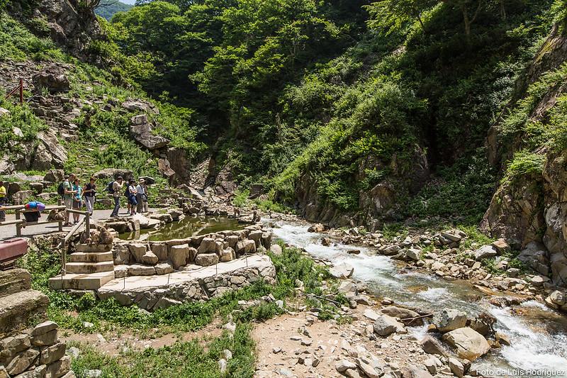 Parque de los macacos de Jigokudani