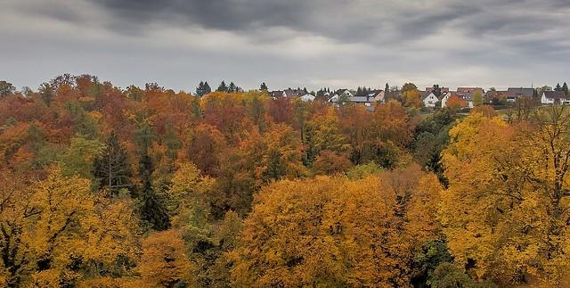 Autumn tints, Bavaria.