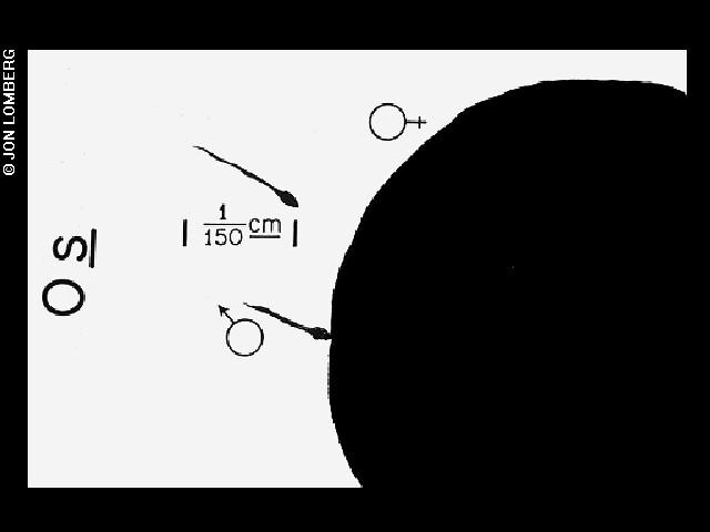 diagram of conception   by nasajpl diagram of conception   by nasajpl