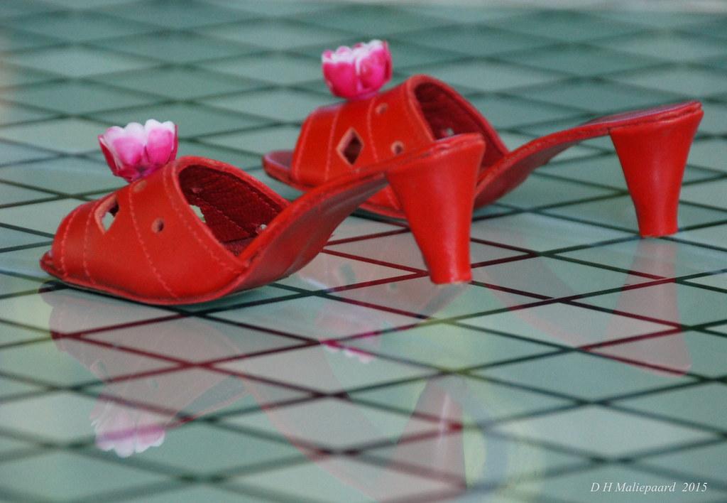 a5668b90c51 De rode schoentjes Efteling   SONY DSC De rode schoentjes is…   Flickr