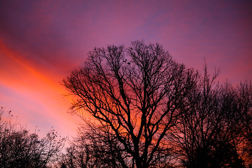 trees sky clouds sunrise canon dawn is mk2 5d 70200 morningsun f4l 70200f4lis canon5dmk2