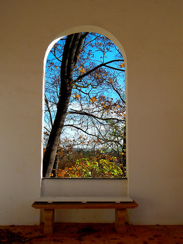 caledoniafan nature natur nikon nikoncoolpixl820 nikoncoolpix bench bank autumn farben fall herbst lichtenwalde lichtenwaldebaroquegardens