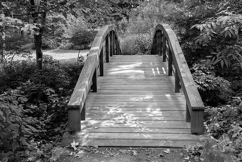 travel bridge trees summer blackandwhite bw usa white black tourism nature monochrome beautiful gardens garden landscape geotagged botanical outside outdoors photography blackwhite nc nikon dof unitedstates footbridge outdoor northcarolina depthoffield foliage walkway stunning destination serene nikkor botanicalgardens woodenbridge bnw touristattraction unca d800 bga avl wnc monochromeblackandwhite carolinas westernnc westernnorthcarolina ashevillenc ashevillenorthcarolina outdoorphotography uncasheville traveldestination botanicalgardensatasheville ashevillebotanicalgardens ashevillephotography universityofnorthcarolinaatasheville nikond800 nctourism uncabotanicalgardens mygearandme montfordhills northcarolinatourism visitasheville nctouristattraction geo:lat=3561240005 geo:lon=8256657824 ashevilletourism