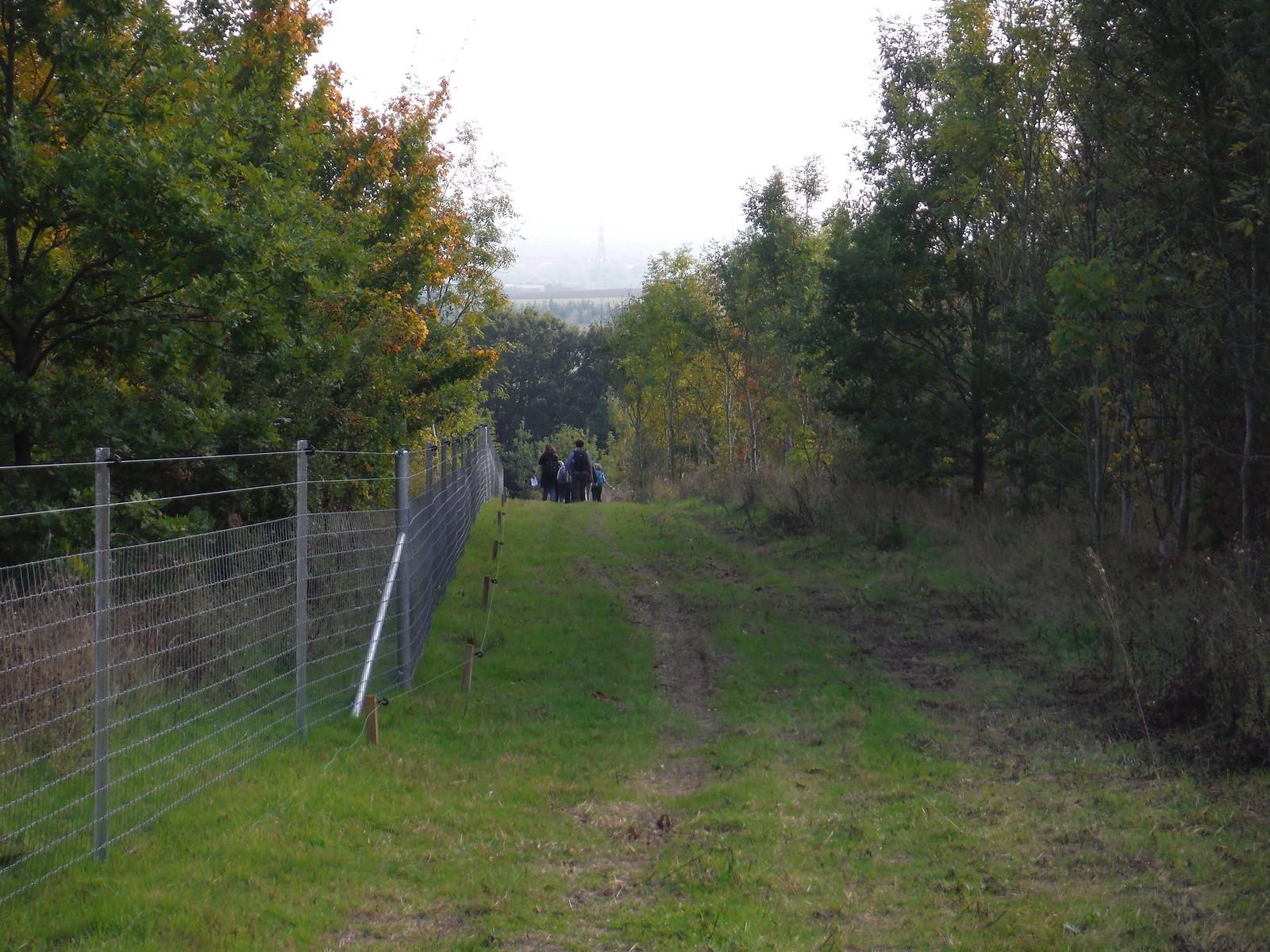 Path near Quilter's Farm SWC Walk 159 South Woodham Ferrers to North Fambridge