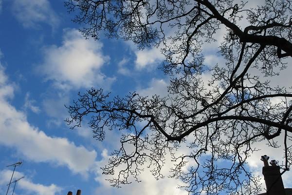 Ciel d'automne. Autumn sky.